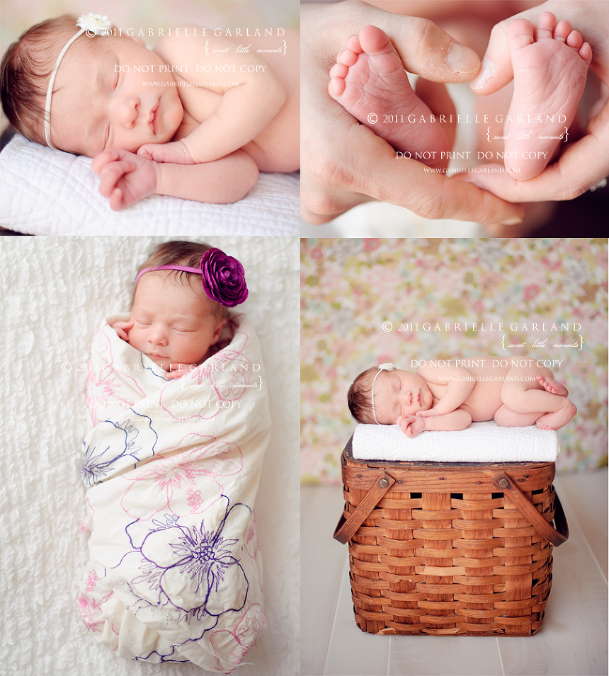 syracuse baby photography gift certificate