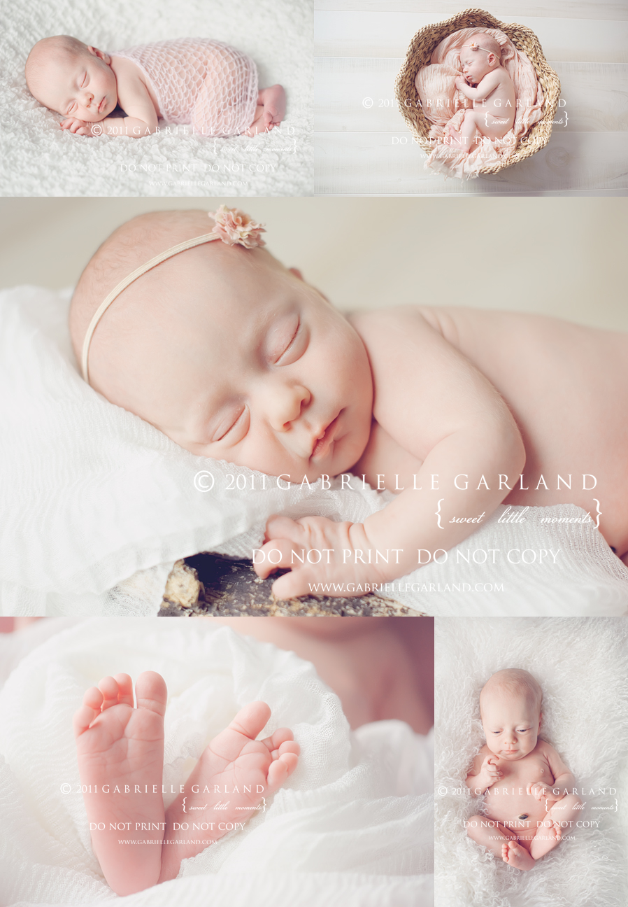 syracuse baby girl photography